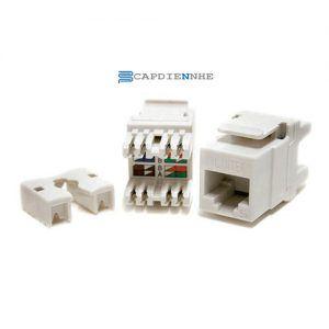 Alantek Cat6 UTP Dual IDC Jack, white 302-2QX618-WHAB